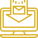 Gold package icon
